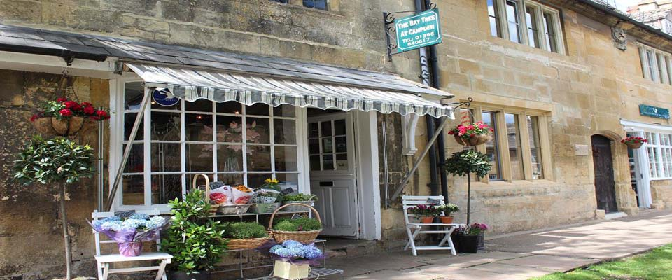 Welcome to The Bay Tree Florist at Chipping Campden